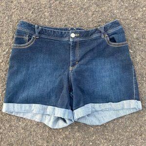 Lane Bryant Denim Shorts size 20